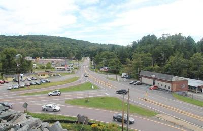 Honesdale Residential Lots & Land For Sale: Beach Lake Hwy