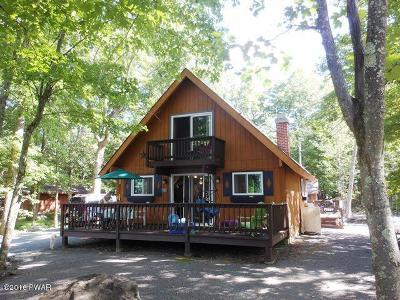 Hemlock Farms Single Family Home For Sale: 131 Maple Ridge Dr
