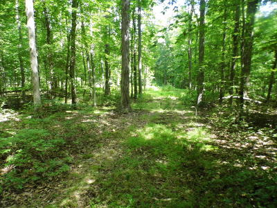Hawley PA Residential Lots & Land For Sale: $42,500