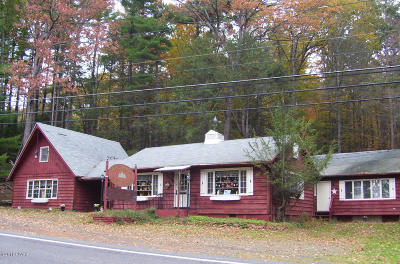 Paupack Commercial For Sale: 694 Rt 507