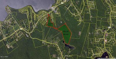 Tafton PA Residential Lots & Land For Sale: $600,000