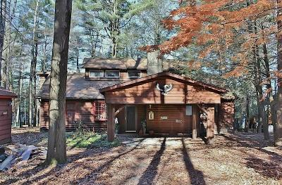 Pike County, Wayne County Single Family Home For Sale: 119 Lake Shore Rd