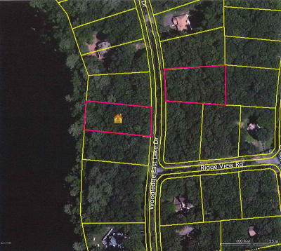 Hawley Residential Lots & Land For Sale: 11-2 Woodledge East Lake Dr