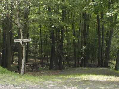 Milford Residential Lots & Land For Sale: 136 Forest Glen Dr