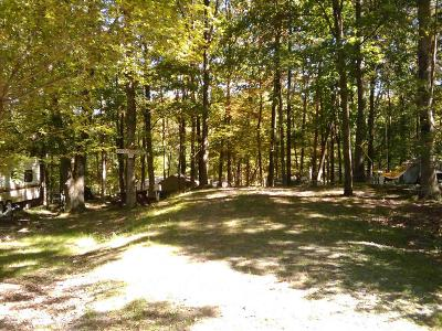 Milford Residential Lots & Land For Sale: 767 Dingman Dr