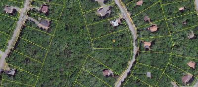Masthope Residential Lots & Land For Sale: 208 Tanager Rd