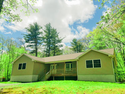 Milford PA Single Family Home For Sale: $250,000