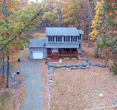 Hawley Single Family Home For Sale: 149 Lake View Cir