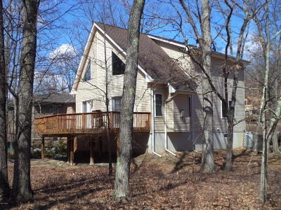 Lackawaxen Single Family Home For Sale: 172 Constitution Dr