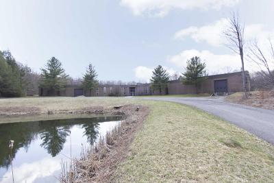 Pike County Commercial For Sale: 115 Mozzette Rd