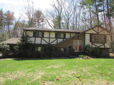 Milford PA Single Family Home For Sale: $249,900