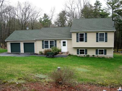 Milford Single Family Home For Sale: 297 Cummins Hill Rd