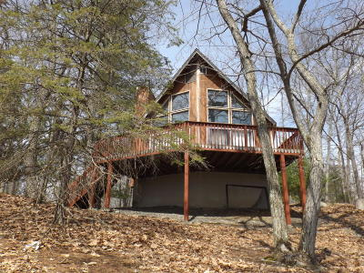 Single Family Home For Sale: 249 Mountain Lake Dr