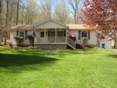Single Family Home For Sale: 213 Mohican Rd