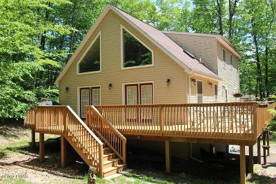 Lake Ariel Single Family Home For Sale: 1020 Mustang Rd