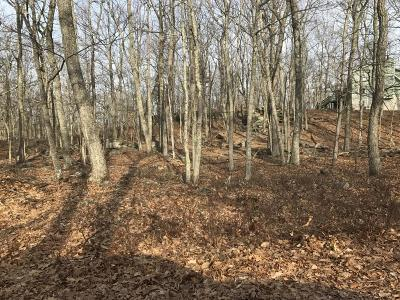 Lackawaxen PA Residential Lots & Land For Sale: $14,000