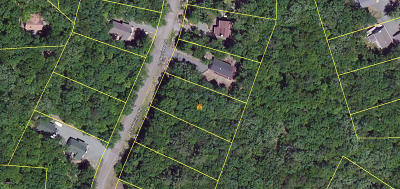 Masthope Residential Lots & Land For Sale: 116 E Lakeview Dr