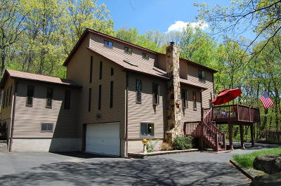 Hemlock Farms Single Family Home For Sale: 100 Concours Lane