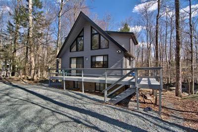 Lake Ariel Single Family Home For Sale: 699 Woodridge Drive