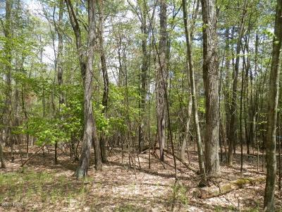 Pocono Mt Woodland Lakes Residential Lots & Land For Sale: Lot 882 Mulberry Dr