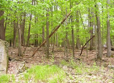 Lakeville Residential Lots & Land For Sale: Lot 92 Cardinal Ct