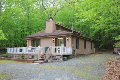 Lackawaxen Single Family Home For Sale: 255 Falling Waters Blvd