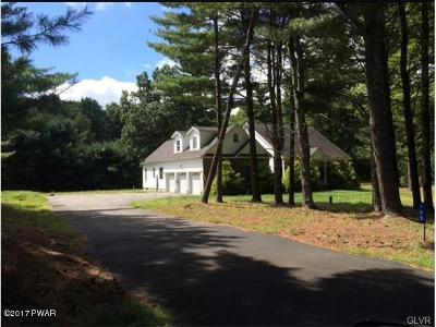 Dingmans Ferry Single Family Home For Sale: 105 Stonegate Ct
