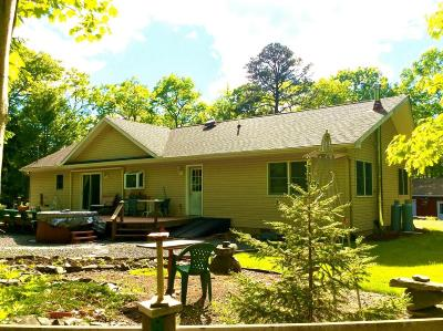 Hawley Single Family Home For Sale: 119 Cabin Ridge Rd