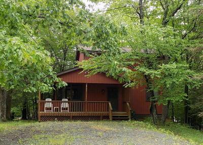 Lake Ariel Single Family Home For Sale: 1021 Calypso Dr