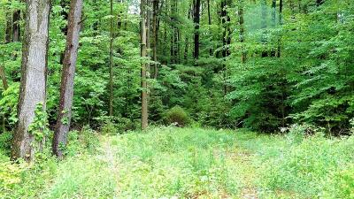 Wayne County Residential Lots & Land For Sale: Lot 1 Route 196 Easton Turnpike