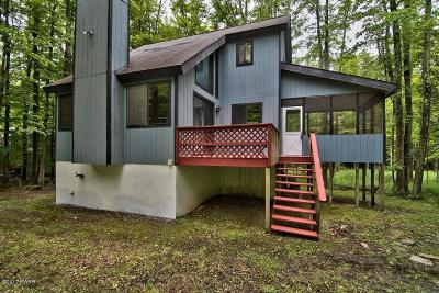 Lake Ariel Single Family Home For Sale: 45 Parkwood Drive