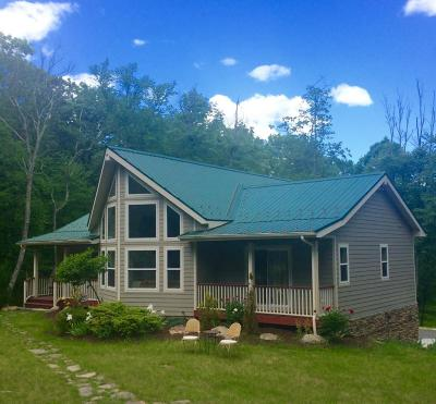 Milford Single Family Home For Sale: 309 Sawkill Rd