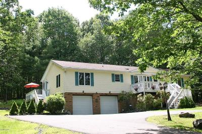 Milford Single Family Home For Sale: 195 Locust Dr