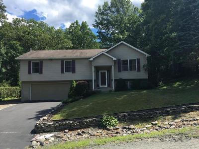 Milford Single Family Home For Sale: 207 Vandermark Dr