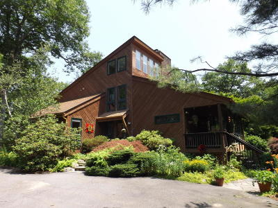 Dingmans Ferry Single Family Home For Sale: 1394 Route 739