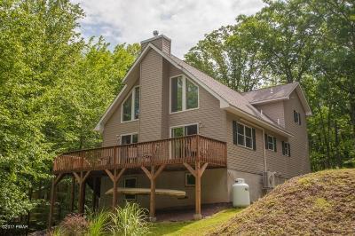 Hawley Single Family Home For Sale: 193 E Shore Dr