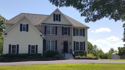 Dingmans Ferry Single Family Home For Sale: 107 Stone Ridge Rd