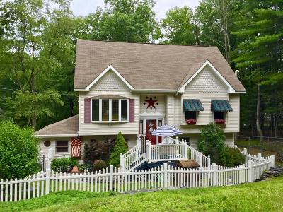 Milford Single Family Home For Sale: 382 Raymondskill Rd
