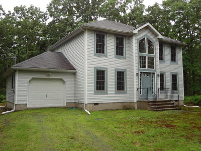 Milford Single Family Home For Sale: 168 Overbrook Run
