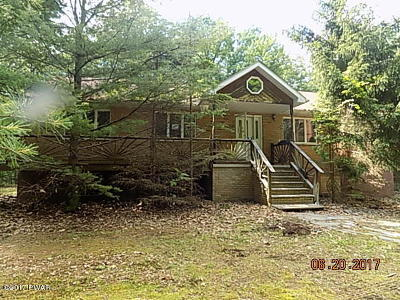 Dingmans Ferry Single Family Home For Sale: 249 Water Forest Dr
