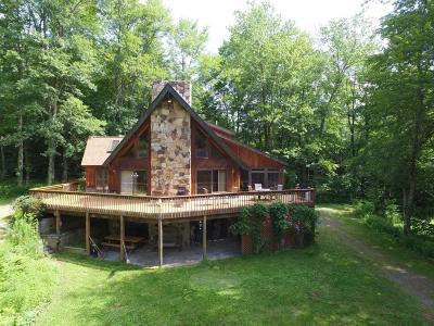 Lake Ariel Single Family Home For Sale: 69 Schiavetta Trl