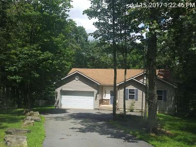 Lords Valley PA Single Family Home For Sale: $214,900