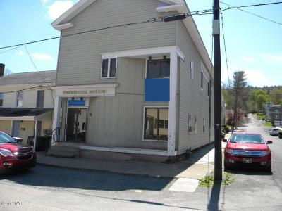 Wayne County Commercial For Sale: 300 Keystone St