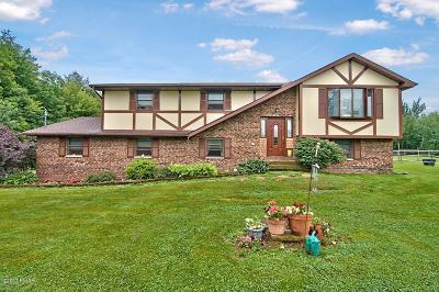 Beach Lake PA Single Family Home For Sale: $375,000