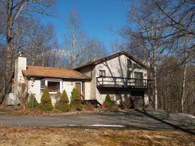 Lackawaxen PA Single Family Home For Sale: $101,900
