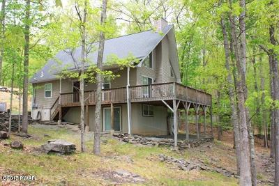 Lackawaxen Single Family Home For Sale: 141 Minuteman Ln
