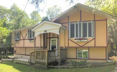 Lake Ariel PA Single Family Home For Sale: $219,000