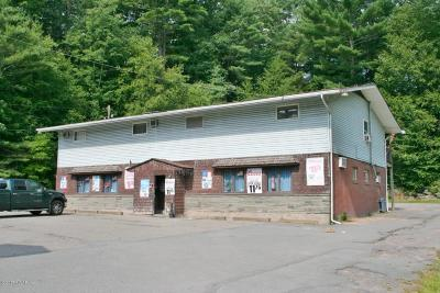 Wayne County Commercial For Sale: 153 Welwood Ave