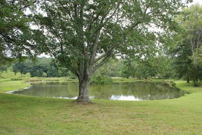 Dingmans Ferry Single Family Home For Sale: 115 Chestnut Ridge Rd