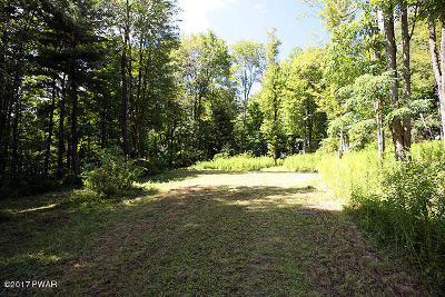 Equinunk PA Residential Lots & Land For Sale: $49,000